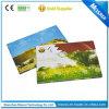 Sensor ligero LCD Video Greeting Card con Inside Page