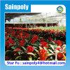 Weltbestes verkaufenblume verwendetes PC Gewächshaus