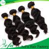 AofA belleza 7A pelo de la Virgen del 100% cruda sin procesar peluca