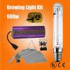 Hydroponic растущий светлый светильник 600W Mh HPS