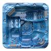 2014の屋外の鉱泉/鉱泉/ジャクージA521