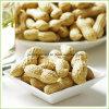 Arachide rôtie par collecte neuve chinoise Inshell