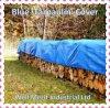 Cubierta azul de la cubierta de la lona del polietileno