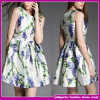 Reizvoller Frauen-Sommer kleidet Form 2015, die koreanische Art kleidet (SOD01)