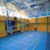 El baloncesto plástico de interior se divierte el suelo