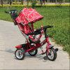 Wandelwagen de Met drie wielen van Trike van de Jonge geitjes van de innovatie