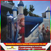 Castelo de salto Bouncy congelado inflável comercial da casa do salto do divertimento dos miúdos para a venda