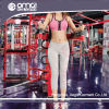 Tracksuits Джерси Таиланд Sportswear горячего бюстгальтера спортов женщин популярные (WC0009)