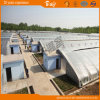 딸기 증가를 위한 높은 수확량 태양 온실