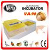 Hachure de 96 Eggs Transparent Cheap Suppliers de l'Algérie Chicks Incubator