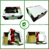 Cajas de cartón corrugado de fruta, fruta de la cereza caja de empaquetado (FP020009)