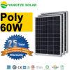 El panel solar libre 12V del envío 60W polivinílico