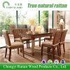 Mobilia della sala da pranzo della mobilia del rattan per l'hotel domestico