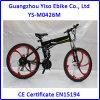 bici de 500W Magne E con las ruedas del magnesio con la batería Pedelac del LG