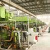 38mw (10X3.8MW)) Электростанция генератора Set/Hfo Hfo