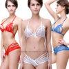 Lingerie sexy de bikini de dames européennes de type