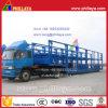 Bâti-Ouvrir la remorque de transporteur de véhicule semi pour Philippines (6 véhicules)