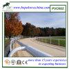 Preiswertes Pferden-laufender Zaun