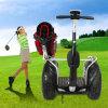 골프 전기 2륜 전차 (DMZHC01 골프 유형)