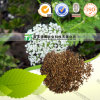 100%の純粋で自然なハーブの薬Fructus Cnidii