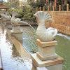 Swimmig Pool-im Freienbrunnen-Statue