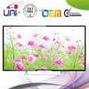 2016 Androïde en Slimme e-GELEIDE TV Uni met HDMI