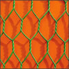 Coated Hexagonal Wire Mesh Fence
