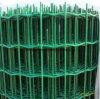 Ячеистая сеть загородки евро PVC Coated/Голландии