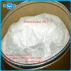 Pharmaceutical Raw Material Benzocaine Cloridrato de Anestesia Local HCl Benzocaine