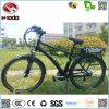 販売のためのよいQuatityの道都市電気バイク
