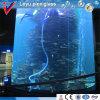 Tanque redondo do aquário dos peixes do cilindro acrílico do molde