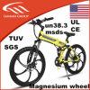China-elektrisches Fahrrad faltbare Megnsium Räder