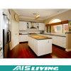 Muebles de las cabinas de cocina del color del doble del estilo de U (AIS-K279)