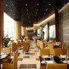 Heißes verkaufendes elegantes Hotel, das Stuhl-Möbel speist