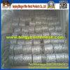 Heiße Verkäufe galvanisierten Stacheldraht (Export-Qualität)