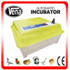CE Approved Fully Automatic Fan Transport Infant Egg Incubator Va-48 de Va-48 Newest à vendre