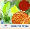 Gardeniaの黄色い粉カラー値300/400/500
