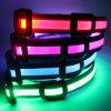 Blinkendes Licht-Hundehalsringe: Großhandels-LED Nylonhundehalsringe der Fabrik-mit kundenspezifischem Firmenzeichen-Qqpets