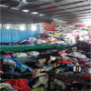 Wholesale maioria Used Clothing para Export para Used Clothing Buyers