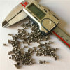 Fabrik-Direct Micro Precision Automatic Lathe Turning Parts mit ISO 9001 Quality Level