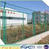 Colorer la frontière de sécurité soudée enduite verte de treillis métallique (XA-WMF3)