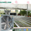 Greenhouse와 Cow House를 위한 시멘스 Motor Cooling Fan