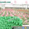 Garniture de refroidissement lavable Vert-Enduite personnalisée pour la serre chaude de plantation végétale