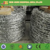鉄ワイヤー材料および電流を通された表面処理電流を通されたかみそりの有刺鉄線中国製