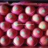 Cartón de embalaje de alta calidad china fresca Qinguan de Apple