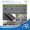 Nonwoven tratado UV para a paisagem, tampa da agricultura