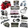 Pièces de rechange de moteur diesel de Cummins (NTA855 KTA19 KTA38 KTA50 M11 VTA28 N14 L10)