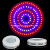 Heet Sale 120W UFO High Power LED Grow Light (ZW0045)