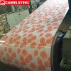 Bobina de aço galvanizada revestimento de PPGI PPGL