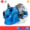 Biomass Steam Powered Electric Generator